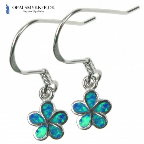 Daisy - Opal øreringe med blå opal sten, 925 Sterling sølv & rhodium belægning